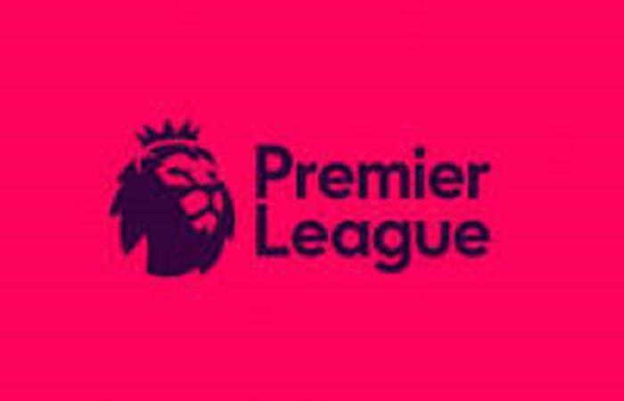 Premier League : voici le plan des anglais pour terminer la saison