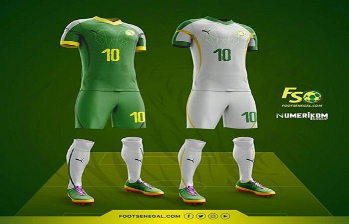Equipe nationale : voici ce que ressemblerai le prochain maillot des Lions