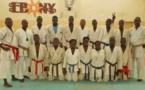 Karaté: Tournoi zone 2, le Sénégal remporte 12 médailles