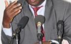 Maitre Babacar Ndiaye sur la diarrhée des lionnes : « Nous allons trouver une solution »