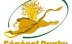 La fédération de rugby revendique 4000 licenciés