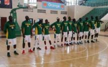Basket : Préparation du tournoi de MAPUTO : Deux séances d'entraînement au menu des Lions  ce lundi