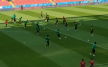 Stade du Spartak de Moscou : Les lions en reconnaissance du terrain