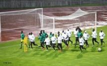 Coupe du monde Pologne : Les lionceaux ont effectué leur première séance d'entrainement à Lublin