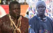 Siteu-Papa Sow ficelé par Pape Abdou Fall : Voici la signature de contrat !